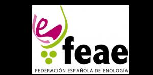 Logo Federacion Española De Enología